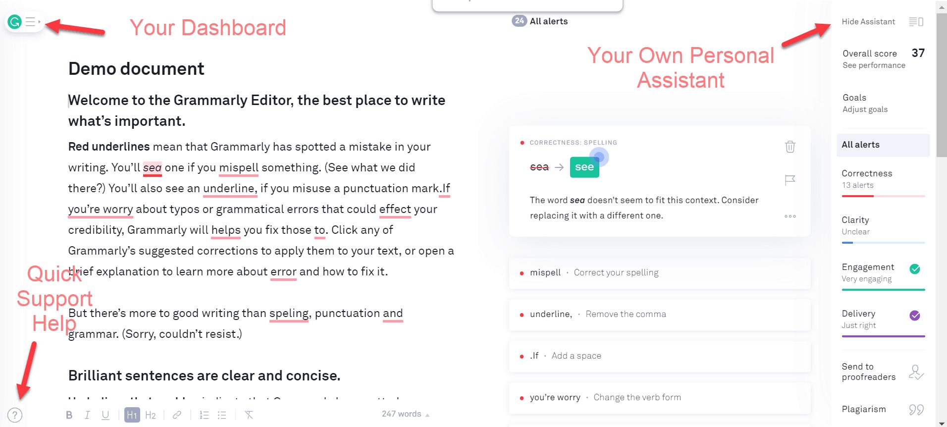 screenshot Grammarly dashboard
