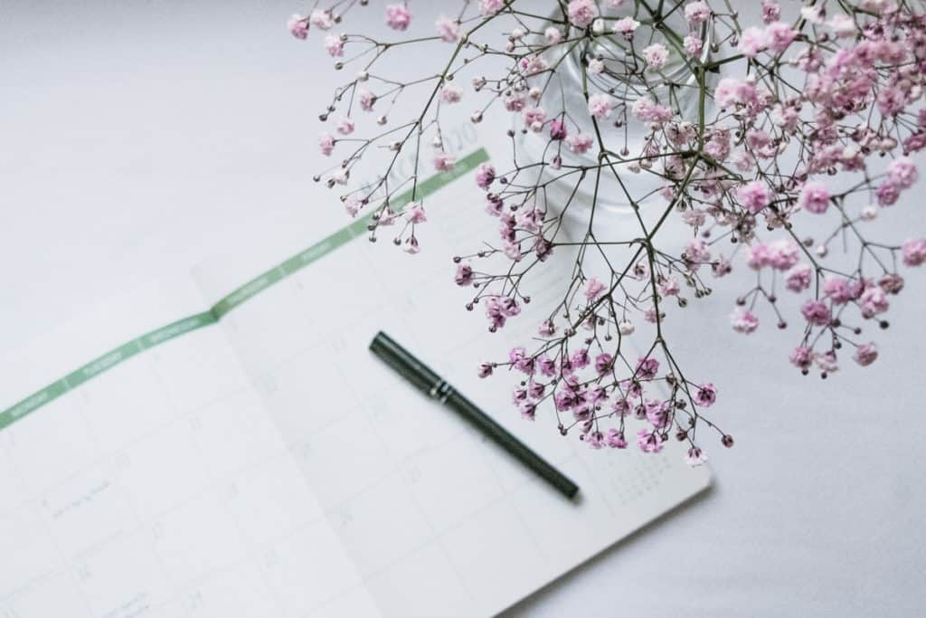 create a business budget babys breath flowers with pen and pad it started with a blog